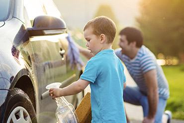 Motor Vehicle Insurance